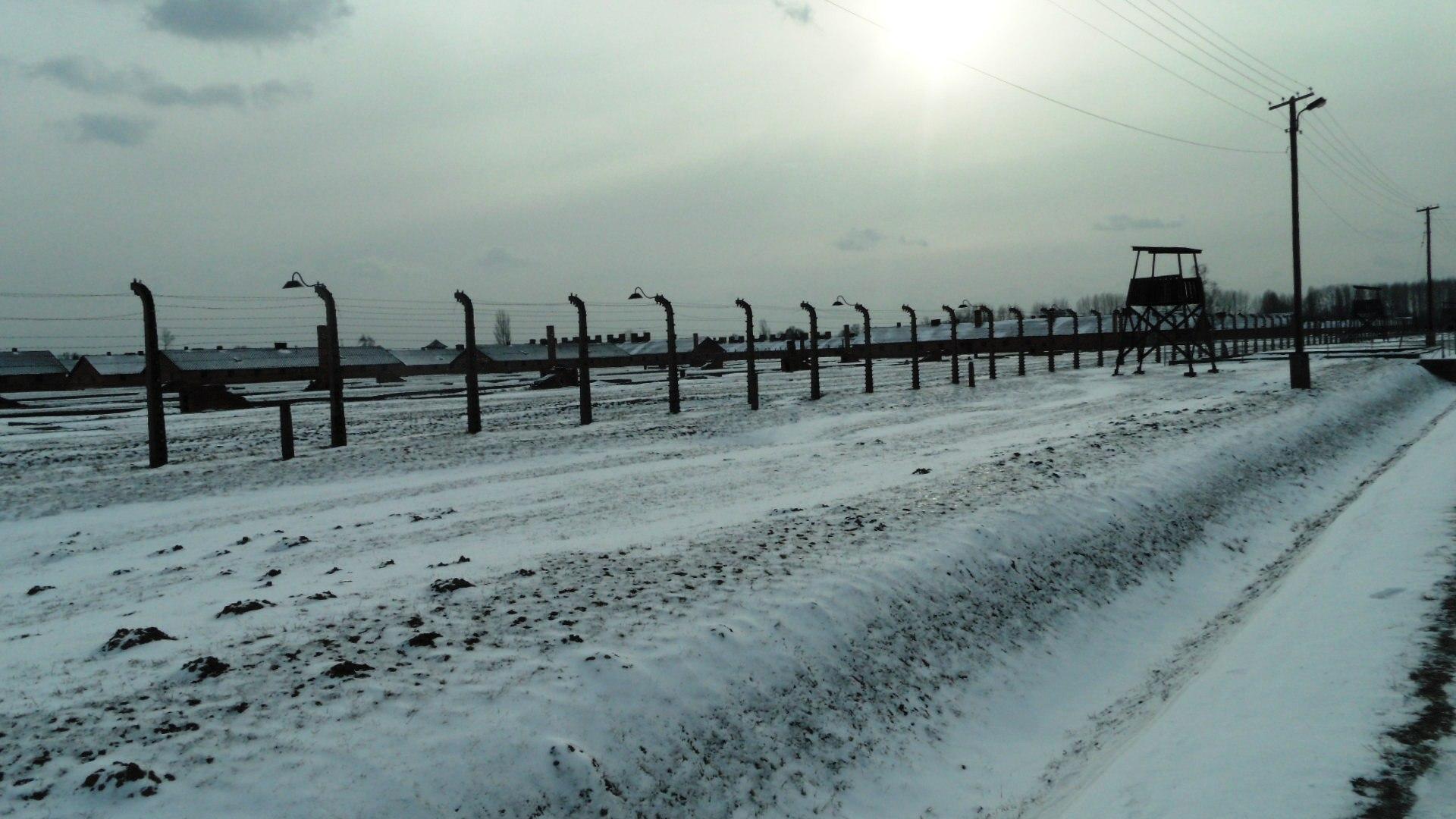76. rocznica wyzwolenia niemieckiego nazistowskiego obozu koncentracyjnego i Zagłady Auschwitz