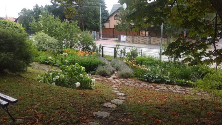 Ogród szkolny - miejsce realizowania zajęć praktycznych