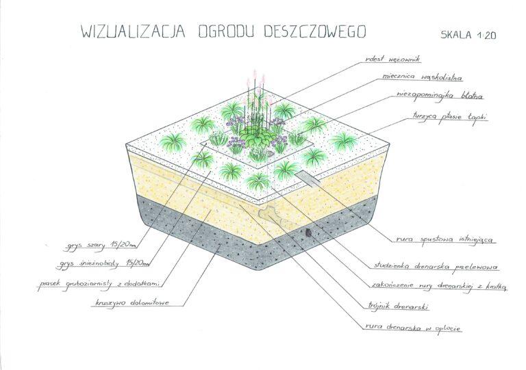 Wizualizacja ogrodu deszczowego