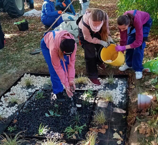 Ogród Deszczowy w ZSA
